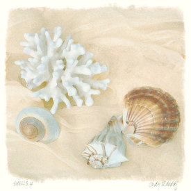 Judy Mandolf - Shells IV