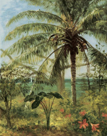 Albert Bierstadt - Palm Tree, Nassau 1892