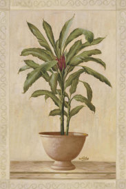 Welby - Potted Palm I