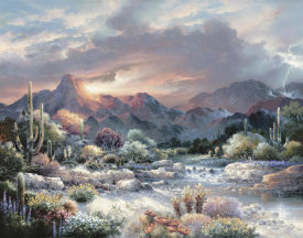 James Lee - Sonoran Sunrise