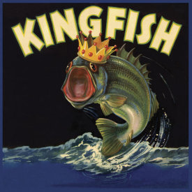 The Miles Graff Collection - Kingfish
