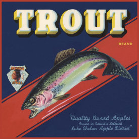 The Miles Graff Collection - Trout