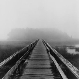 Reid Yalom - Misty Walk, Cape Cod