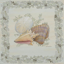 Wendy Russell - Pastel Shell I