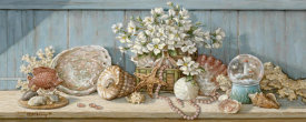 Janet Kruskamp - Seashell Collection I