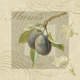 The Miles Graff Collection - Fruits & Blossoms IV