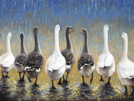 Sambataro - Waddling In The Rain