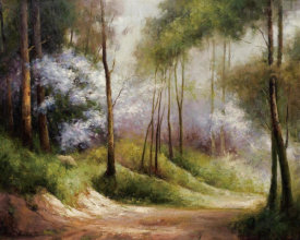 Combe - Fog Embraced Forest