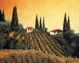 Santo De Vita - Vineyards of Tuscany