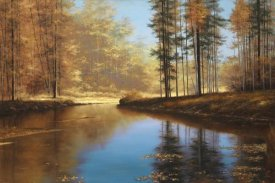 Diane Romanello - Autumn Creek