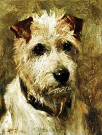 John Emms - Portrait of a Terrier: Darkie