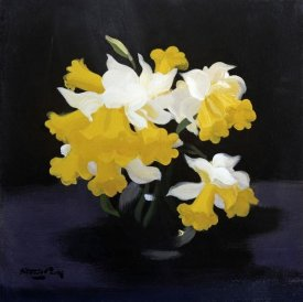 James Stuart Park - Daffodils