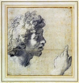 Raphael - Studies of a Mans Head and Hand