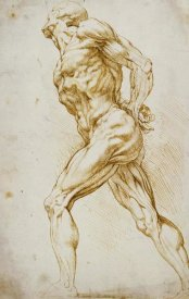 Peter Paul Reubens - Anatomical Study: Nude Male