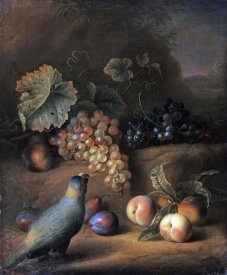Tobias Stranover - A Parrot With Grapes, Peaches and Plums In a Landscape