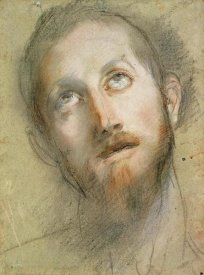 Frederico Barocci - Study For The Head of Christ