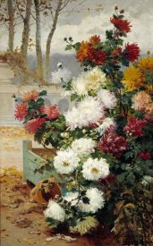 Eugene Henri Chuchois - Chrysanthemums In a Walled Garden