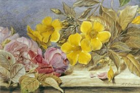 Mary Elizabeth Duffield - A Still Life of Roses