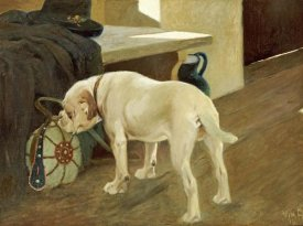 Arthur Heyer - Study of a Bulldog
