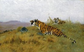 Wilhelm Kuhnert - Tigers Stalking Their Prey