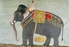 Mughal - Portrait of The Elephant 'Alam-Guman Gajraj'