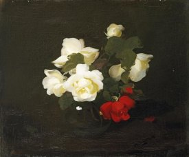 James Stuart Park - Yellow and Red Roses