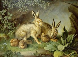 Johann Wenzel Peter - Hares and Leverets In a Rocky Lair