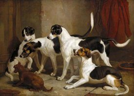 Thomas Woodward - The Puckeridge Foxhounds