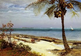 Albert Bierstadt - Tropical Coast