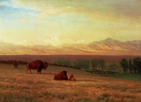 Albert Bierstadt - Buffalo on The Plains