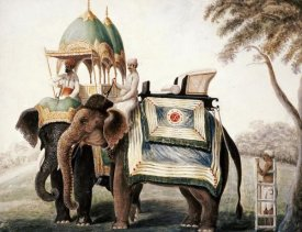 Company School - Elephants With Their Mahout