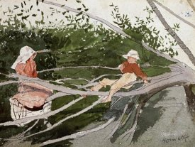 Winslow Homer - Out on a Limb