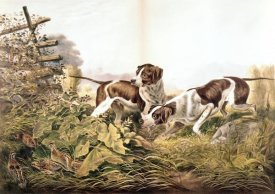 Currier and Ives - American Field Sports.