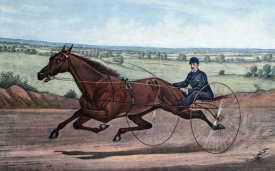 Currier and Ives - Queen of The Turf Maud S., Driven By W.W. Bair