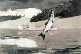 Winslow Homer - Flying Fish on Lake John