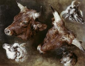 Sir Edwin Landseer - Heads of Sheep & Cattle