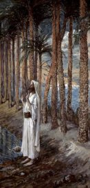 James Tissot - Palm Tree