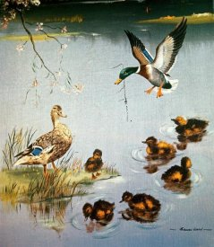 Edward Matthew Ward - Mallards
