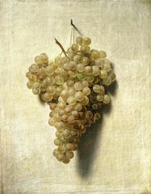 Louis Leopold Boilly - White Grapes (Raisons Blancs)