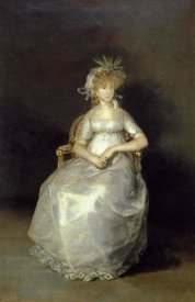 Francisco De Goya - The Countess of Chichon