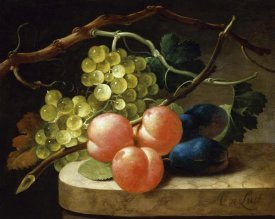 Follower of Antoni de Lust - Grapes on a Vine, Peaches and Plums on a Ledge