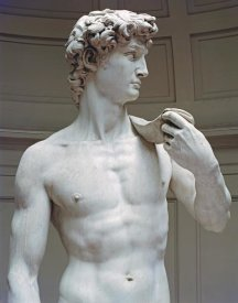 Michelangelo - David (Detail I)
