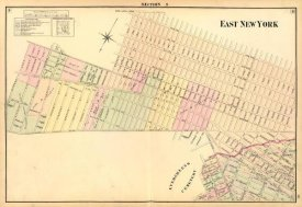 Henry Fulton - East New York (Sec 9), 1874