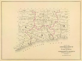 D.H. Hurd and Co. - Connecticut: Congressional districts, 1893