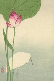 Baison - White heron and lotus, 1894