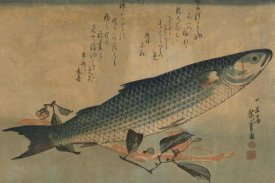 Ando Hiroshige - Striped mullet, 1834