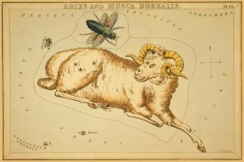 Jehoshaphat Aspin - Aries and Musca Borealis, 1825