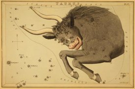 Jehoshaphat Aspin - Taurus the Bull, 1825