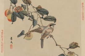 Keibun Matsumura - Bird perched on a branch from a fruit persimmon tree., 1892