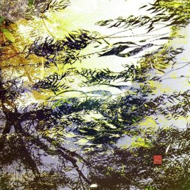 Suzanne Silk - Reflections I